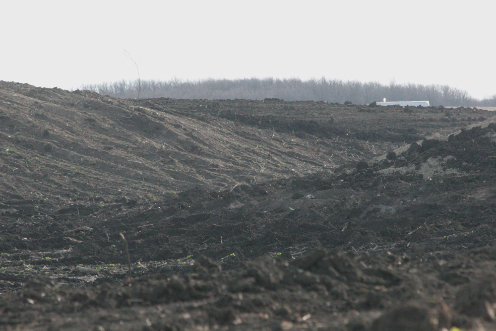 Forested and other natural areas in the Manitoba Escarpment west of Miami continue to be broken up for annual crop production.