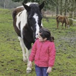 Young girl with horse in a pasture.