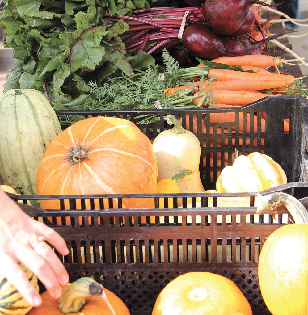 assorted vegetables in a basket