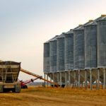 Opinion: Wheat growers support free trade