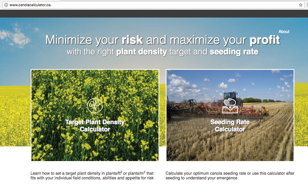Two online calculators are available to help you get your canola stand just right this spring.