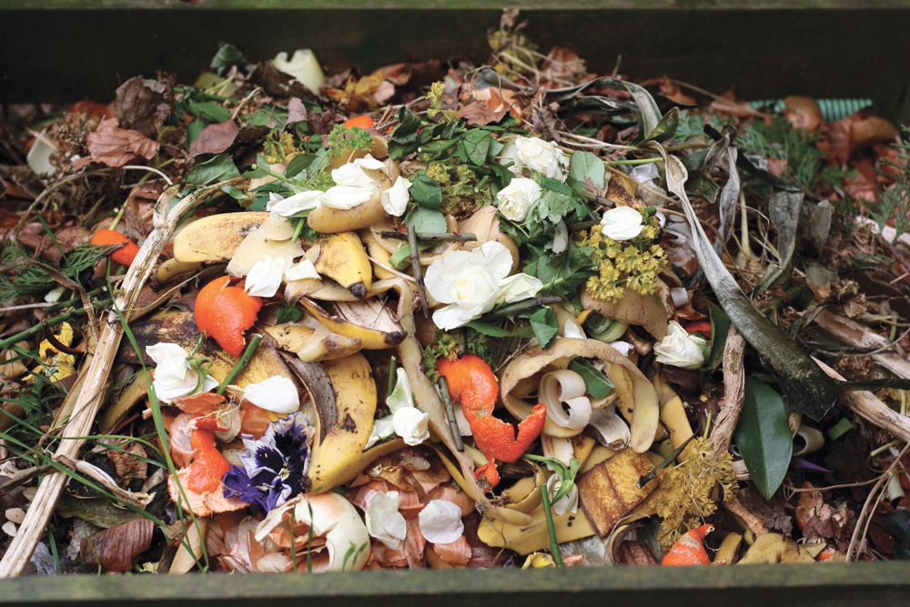 Over 1.3 billion tonnes of food waste are created globally each year. A new process promises to make converting it to fertilizer and fuel more efficient in cold climates.