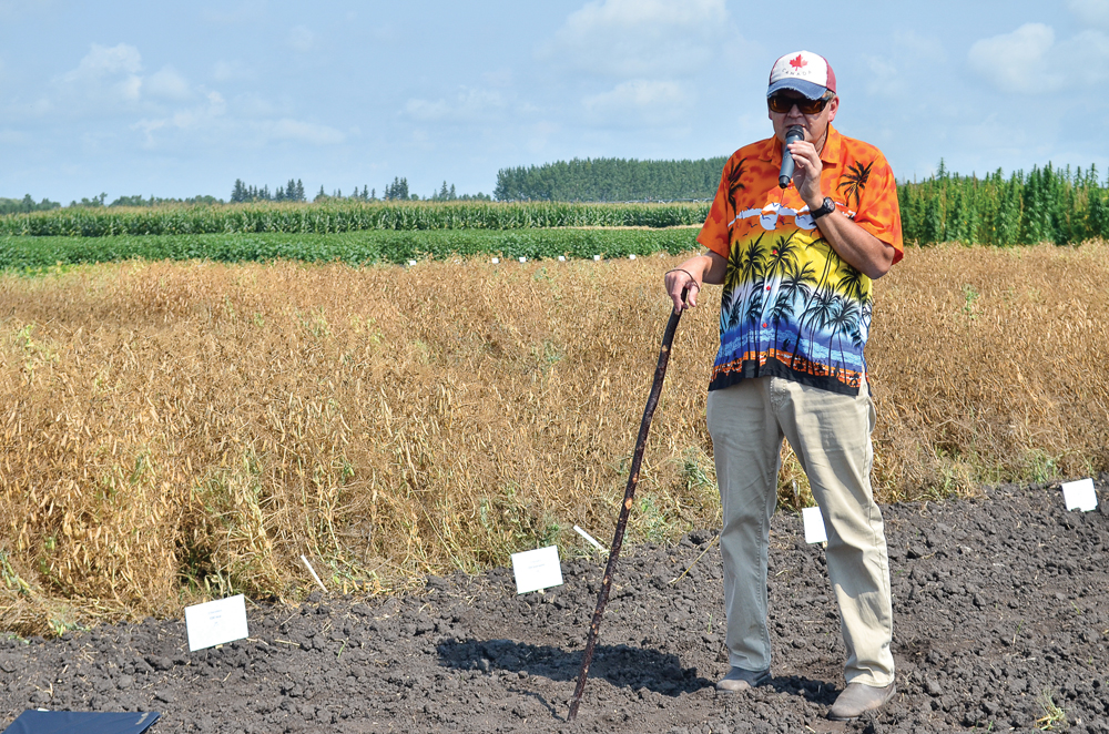 Dennis Lange, Manitoba Agriculture pulse specialist, gives an update on pea variety trials and new protein measurements during the Canada-Manitoba Crop Diversification Centre tour in Carberry Aug. 16.