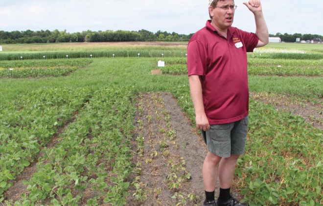 There's talk of restricting dicamba use in Arkansas following many crop injury complaints there this growing season, but there's no such talk in Manitoba. Manitoba Agriculture's Terry Buss spoke about a plot demonstrating dicamba drift damage at the Crop Diagnostic School in Carman in July.