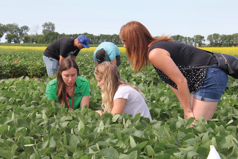 Kristen MacMillan, the University of Manitoba's faculty of agricultural and food sciences' agronomist in residence, talks to students in the field 