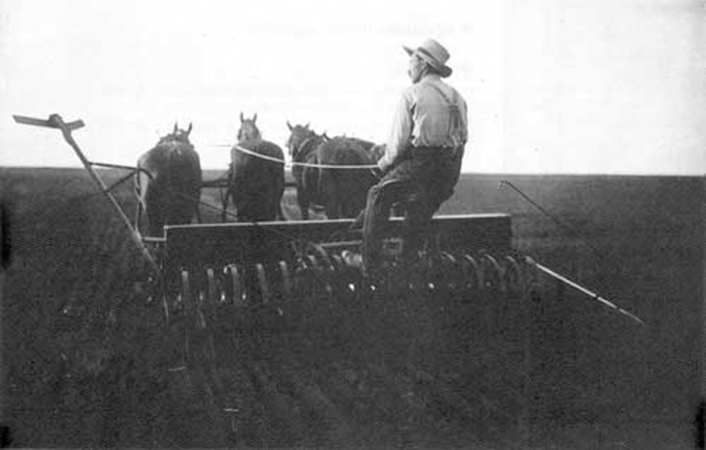 Hours of work and who took care of the horses were just a couple of issues for early farmers while managing their labour force.
