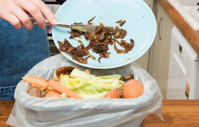 There are many causes of — and solutions to — food waste.
