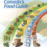 The Canada Food Guide has not been revised for eight years, leaving many to wonder what 2019's update to the guide will bring.