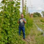 Chris Wararuk surveys one of Farmery's hops yards, near Neepawa.