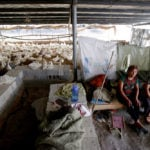 Workers sit on a bed next to ducks at a farm in Jiaxiang county, Shandong province, China.