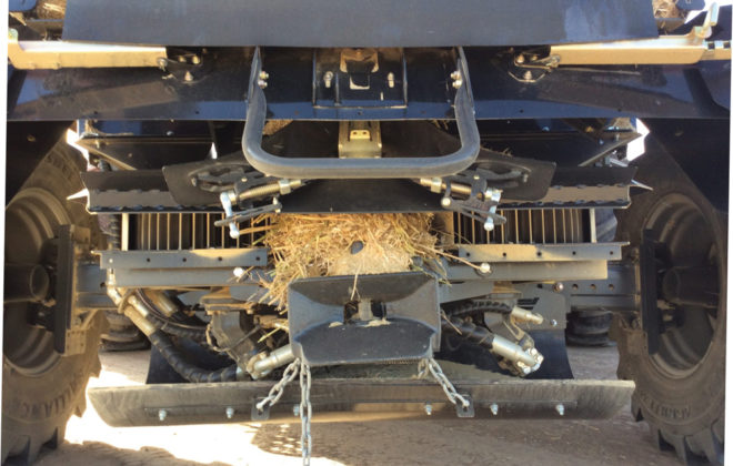 The Harrington Seed 