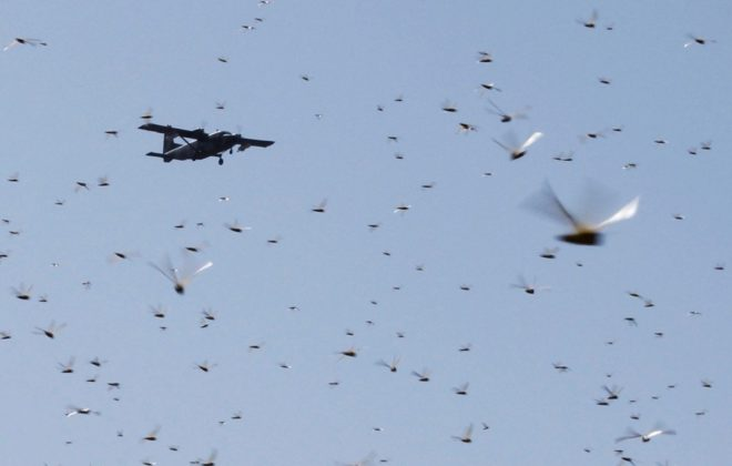 A spray plane flies over a swarm of desert locusts at Lemasulani village in Kenya's Samburu County on Jan. 17, 2020. (Photo: Reuters/Njeri Mwangi)