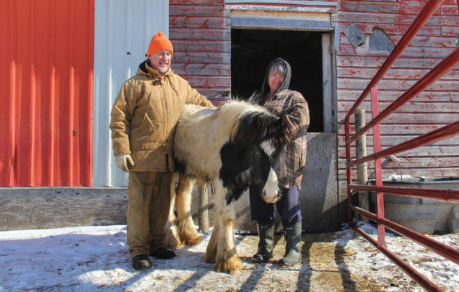 "Cora and Karl Hohenberg pose with ""April,"" a Gypsy cob yearling at their La Broquerie farm."