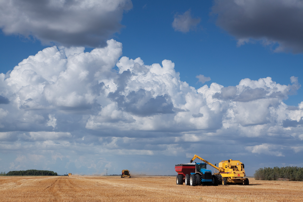 Canadian, Manitoba farmland values higher in 2019