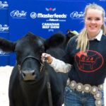Layne Chantler of Alliston, Ont. brought this show heifer to the Royal Agricultural Winter Fair in 2019. (Farmtario photo by Jennifer Glenney)