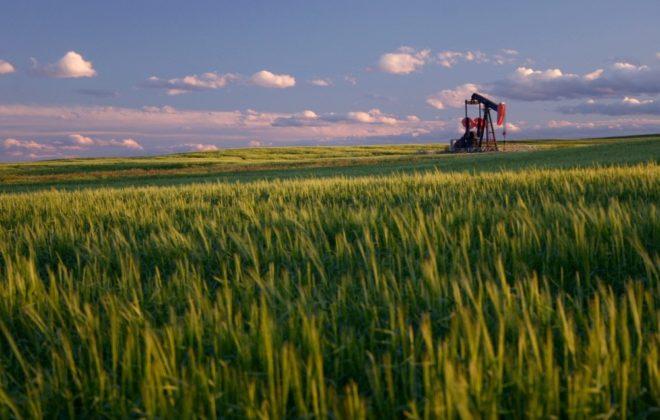 File photo of an Alberta wheat field. (ImagineGolf/E+/Getty Images)
