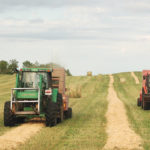 First cut hay harvest a mixed bag