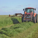 Forage tool aims to make the perfect match