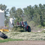 Forage insurance review offers hope to producers