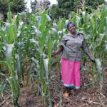 Federal funds to help African farmers