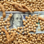 China buys at least eight cargoes of U.S. soybeans