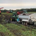 Smooth harvest, but short yield for potato growers