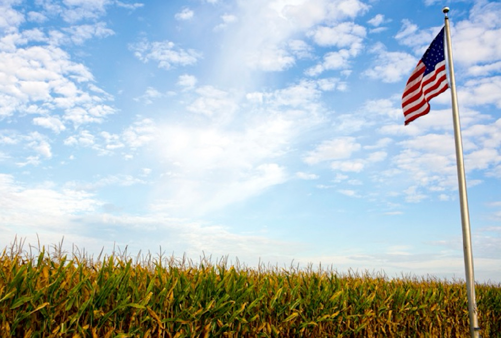 Iowa, Wisconsin, North Carolina and Indiana are being considered swing states – each also ranks among the country's top 10 agricultural-producing states.