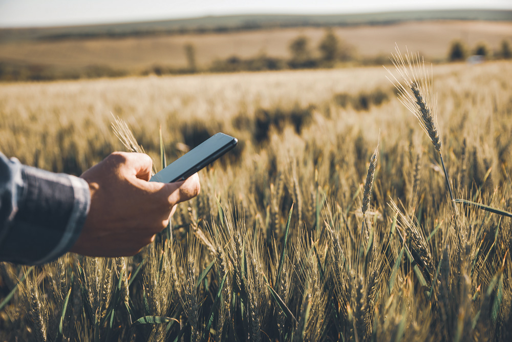Data can help farmers make better decisions, but collecting that data has to be part of a plan.