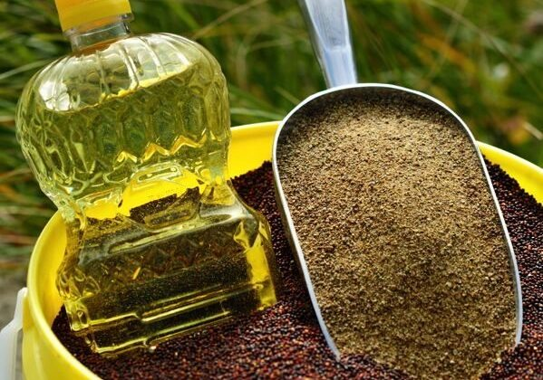 Canola seed, oil and meal. (Photo courtesy Canola Council of Canada)