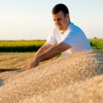 Russia may keep taxing wheat exports