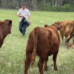 Ranchers want cards on the table on land improvement values