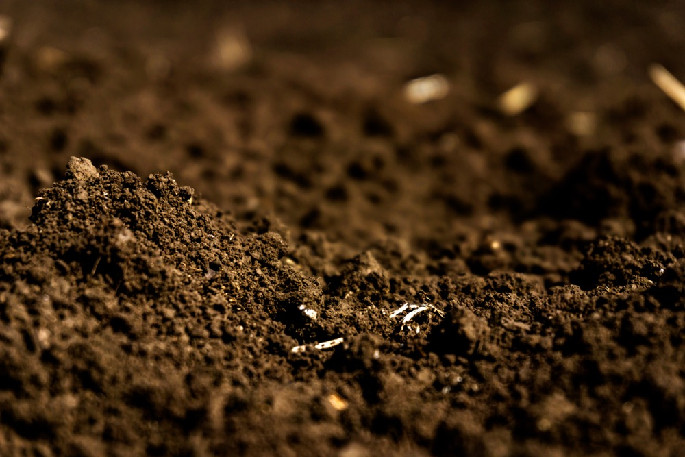 "... the health of one soil can be very different from the health of another and both are healthy."" – David Lobb, University of Manitoba."