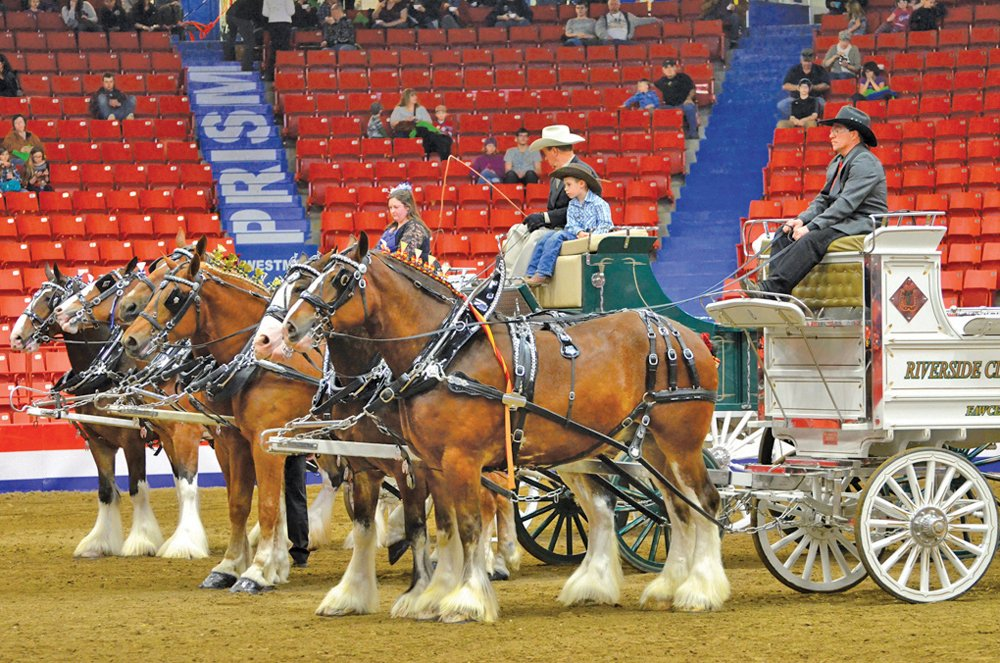 The signature heavy horse event is just one of many facets of the Royal Manitoba Winter Fair that remains on hiatus awaiting better times.