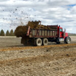 Troublesome weeds spread through manure